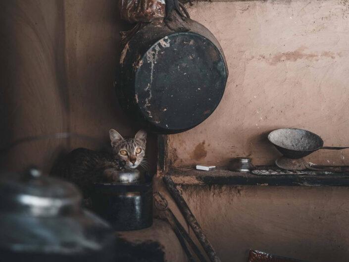 A cat lying on a stove in a rustic house in Nepal.