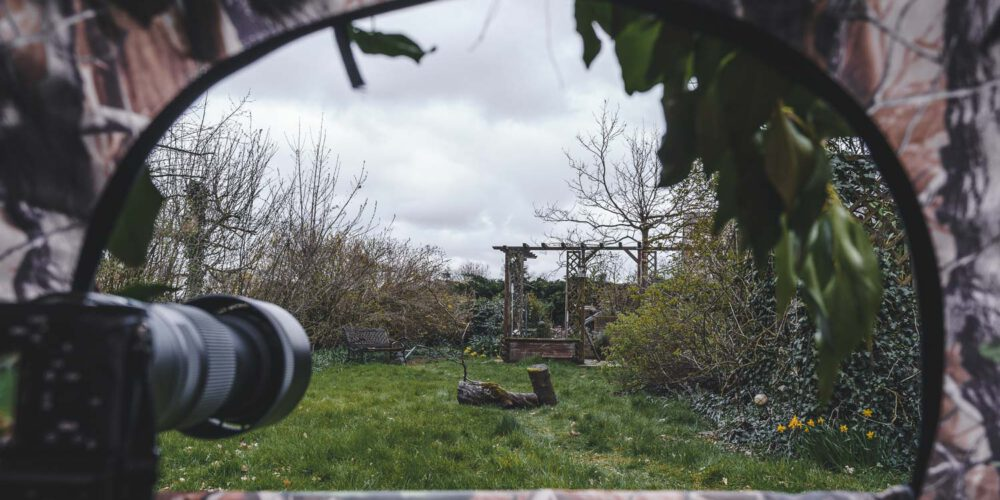 A set-up to photograph wildlife in the garden.